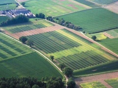 Классификатор видов земельных участков