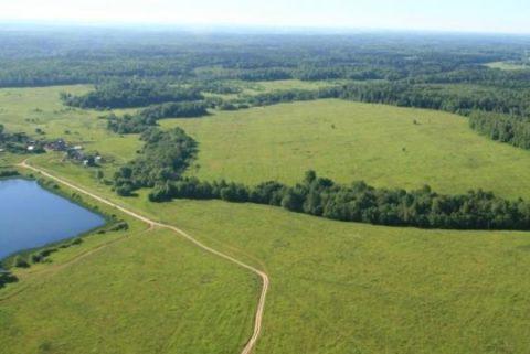 Договор аренды земельного участка сельхозназначения образец