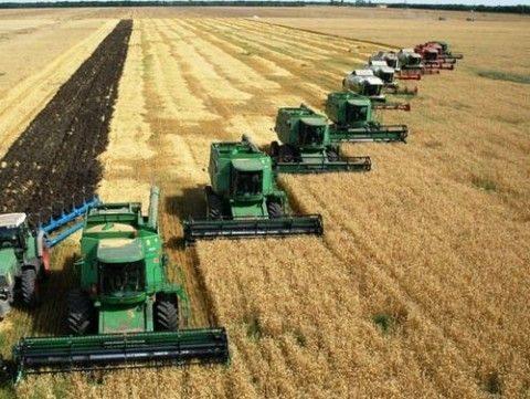 Залог арендованного земельного участка сельхозназначения