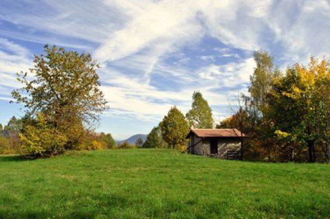 Как бесплатно получить земельный участок от государства