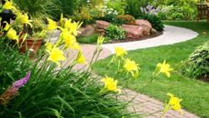 Приватизация садового участка порядок и документы