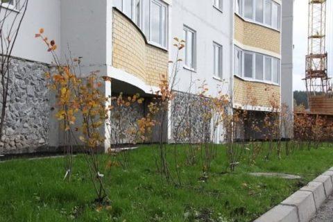 Уборка територии перед многоквартирным домом